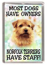 "Norfolk Terrier Dog Fridge Magnet ""Most Dogs ..... Norfolk Terriers Have Staff"""