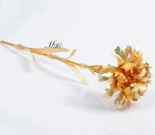 Mother's Day Gift 24K Gold Carnation Forever Flower