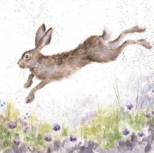 Wrendale Designs-The Country Set-Blank Greetings Card-In Flight-Hare
