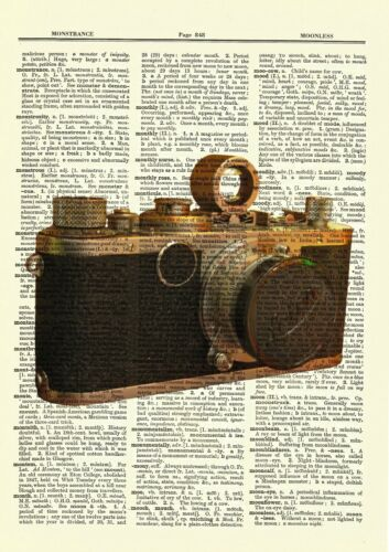Vintage Camera Antique Leica Photography Film Dictionary Art Print Book Picture