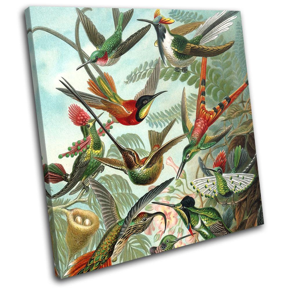 Birds Floral Tropical Vintage Animals SINGLE TOILE murale ART Photo Print
