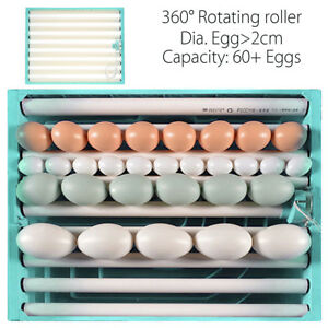 220V Chicken Quail Bird 80 Eggs 360° Turner Tray Automatic Incubator Poutry