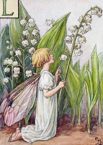 Flor del lirio del valle Hadas B//W cross stitch chart buy 1 Get 1 Mitad De Precio