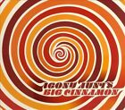 Big Cinnamon [Digipak] by Agony Aunts (CD, 2013, Mystery Lawn Music)