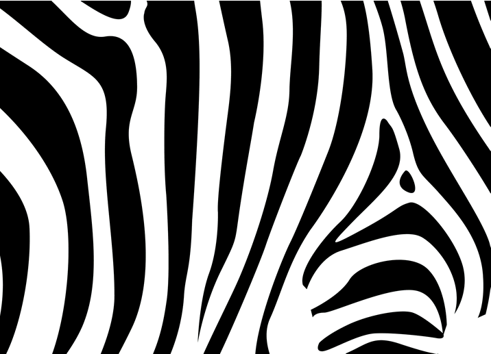 3D Zebra Pattern 97 Wall Paper wall Print Decal Wall Deco Wall Indoor Murals