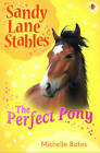 Perfect Pony by Michelle Bates (Paperback, 2009)