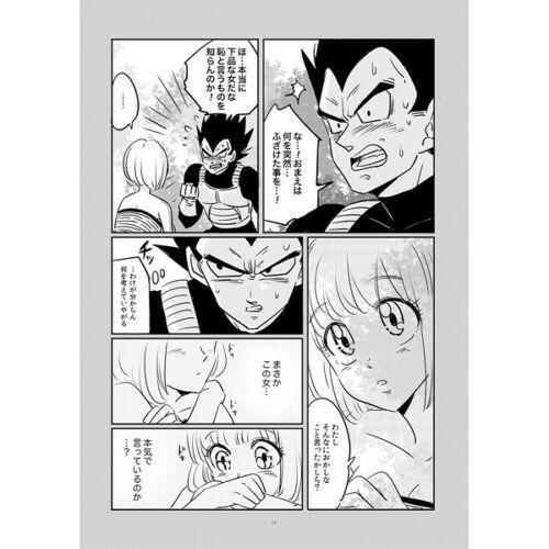 Error Drops B5 28pages Dragon Ball Doujinshi Vegeta X Bulma