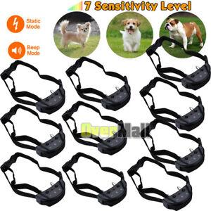 10x-Anti-Barking-E-Collar-No-Bark-Training-Shock-Collar-for-Small-Medium-Dog-Cat