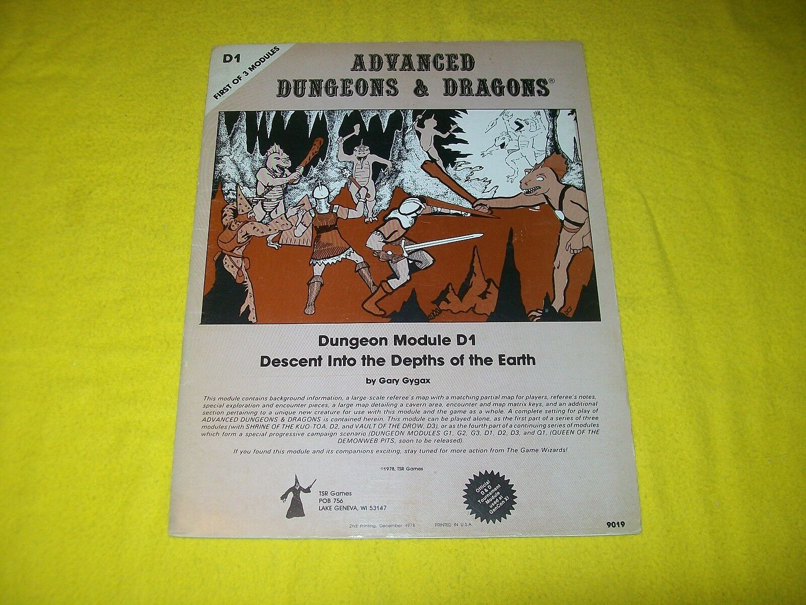 D1 DESCENT INTO THE DEPTHS OF THE EARTH DUNGEONS & DRAGONS AD&D - 4 MONOCHROME