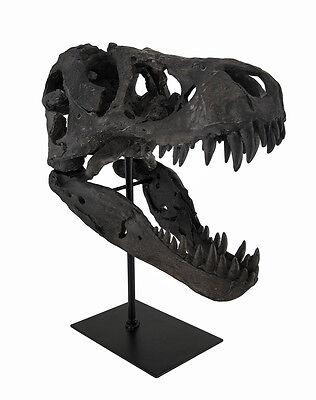 T-Rex Dinosaur Skull Mounted Tyrannosaurus Rex Fossil Statue