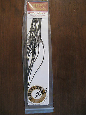 Whiting Grizzly Variant Dry Fly Saddle Hackle ALL SIZE #18 For Fly Tying-NEW