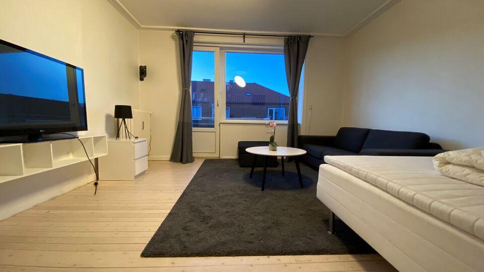 2500 1 vær. lejlighed, 17 m2, Overskousvej