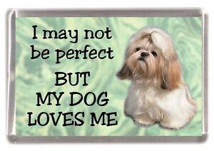 "Shih Tzu Dog Fridge Magnet /""THE MORE I LOVE MY DOG/"" No 3 by Starprint"