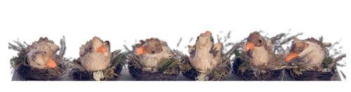"""Animaletti in legno /""""Nido Anatroccoli/"""" x decorazioni giardino//casa,cm 8x7x9"""