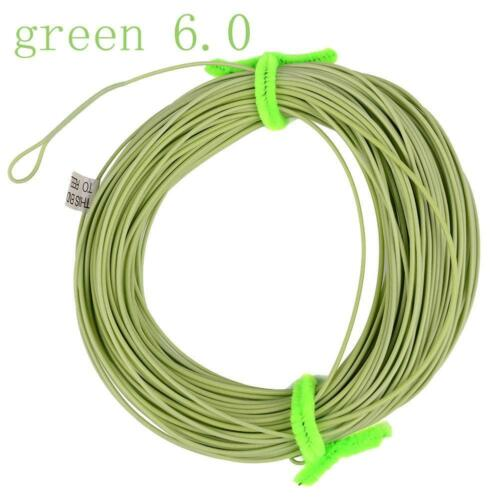 Weight Forward Floating Fly Line WF//5//6//7//8F Trout Fly Fishing All Sizes New