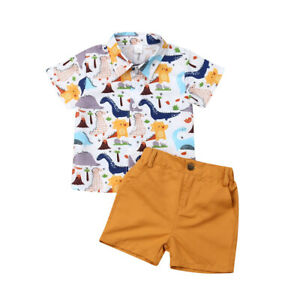Cute Newborn Kid Baby Boys Summer Tops T-shirt Dinosaur Pants Shorts Outfits
