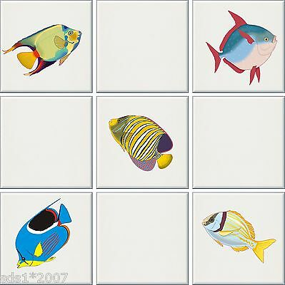 Pictures of fish to colour and print