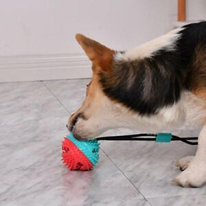 Pet-Molar-Bite-Toys-Dog-Tug-Rope-Ball-Chew-Toys-Pet-Suction-Cleaning-Cups-I7T9