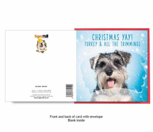 Christmas Yay Cute Schnauzer dog Christmas card from TigerMill Publishing