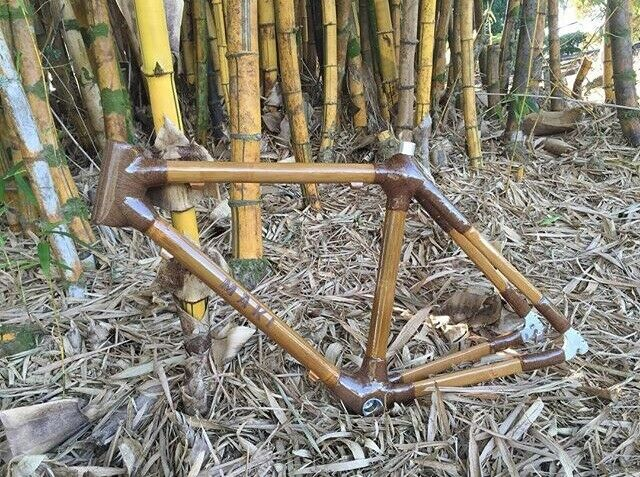 MAKI Bamboo Bicyle bike Frame Sizes 50cm and 52cm Available
