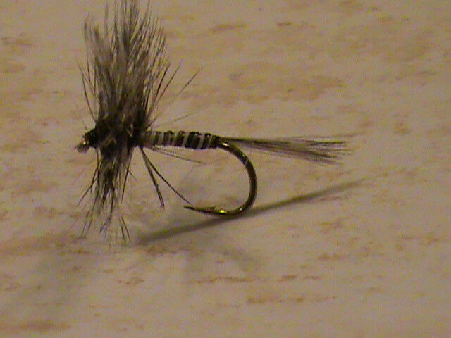 MOSQUITO DRY FLIES  SIZE 12  FOR 3 dozen  NEW