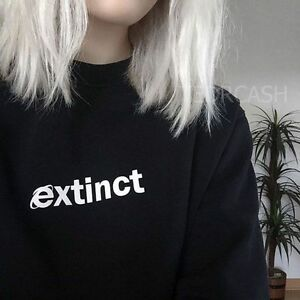 extinct sweatshirt  90s inter  explorer vaporwave tumblr