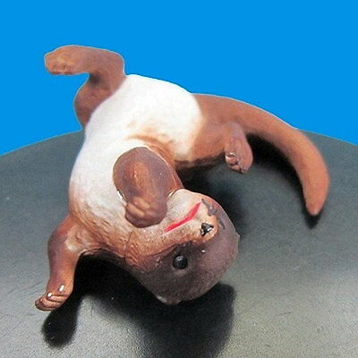 Takara Tomy Capsule NeneAnone Cute Animals ねえねえあのね… Small-clawed otter Figure