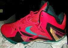 Nike Lebron elite Hero 11 XI
