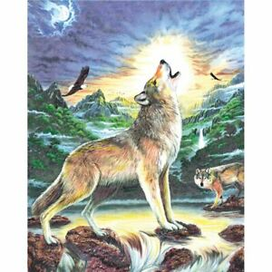 """Color Pencil By Number Kit 8.75""""X11.75""""-Wolf At Night ..."""