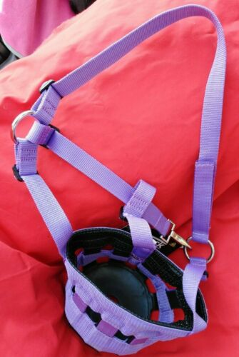 Protack Grazing Muzzle Purple PONY or FULL