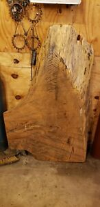 Huge Large Thick Live Edge Red Oak Slab Odd Shape Coffee Table Top