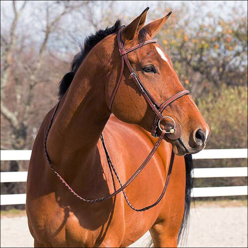 Details about  /C-BR-C Cob Horze Harrison Horse Padded Stitched Bridle W// Laced Reins Light Brow