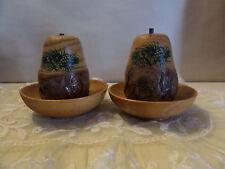 Charlotte NC Pine Knot Salt Pepper Set S&P Pinecone Cone Vintage Souvenir Rustic
