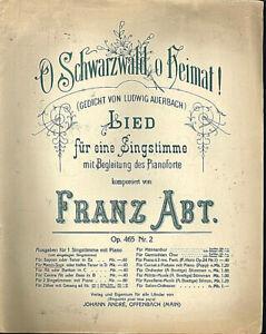 Franz-Abt-O-Schwarzwald-o-Heimat-alte-uebergrosse-Noten