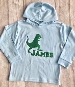 Personalised Dinosaur Boy/'s Blue Hoodie Baby Boy Hoodie Keepsake Gift Cute Glitter T-Rex Matching Hoodys Sweater Jumper Hooby Hoodie