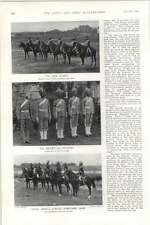 1903 Nizam Of Hyderabad Imperial Lancer Regiment Bandmaster Infantry Arab Guard