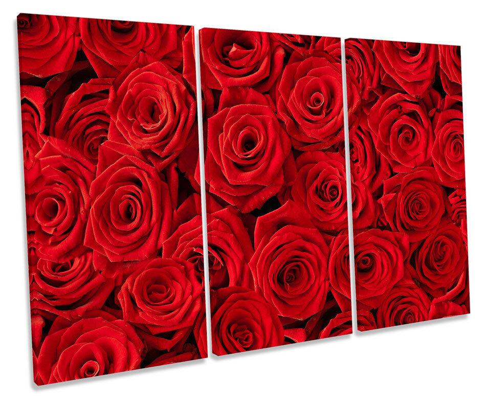 triple Rojo  rosa flores flores lona triple  pa rojo  arte cuadro enmarcado cuadro 3fd48f