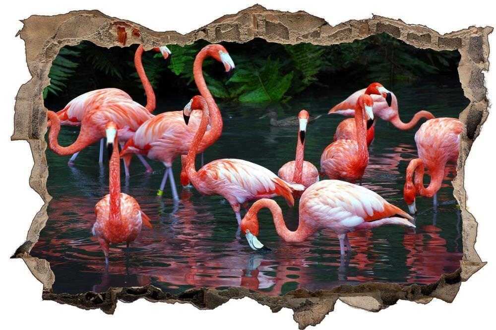 Flamingos nell'acqua natura animali Parete Tatuaggio Parete Adesivo Parete Adesivo d1039