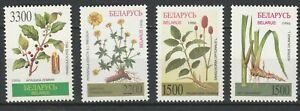 Belarus-1996-Flora-Flowers-Plants-4-MNH-stamps
