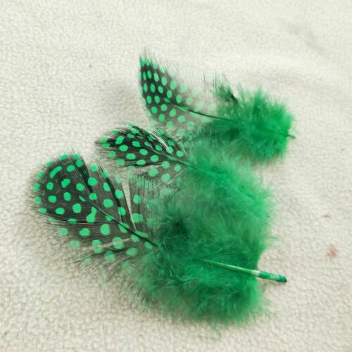 Green Guinea Fowl Feathers With Pearl Dot Pattern For DIY Art Craft /& Decoration