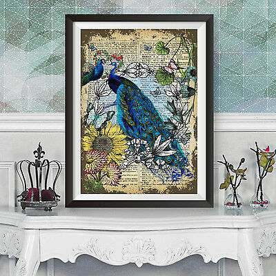 Reproduction art print dictionary background Peacocks and Flamingos
