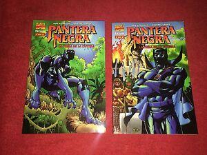 PANTERA-NEGRA-LA-PRESA-DE-LA-PANTERA-SERIE-COMPLETA