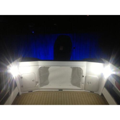 12 Volt Dome Light Fixture: 12V 2x Cabin Dome Light-Boat/Marine/Caravan/Ceiling Lamp