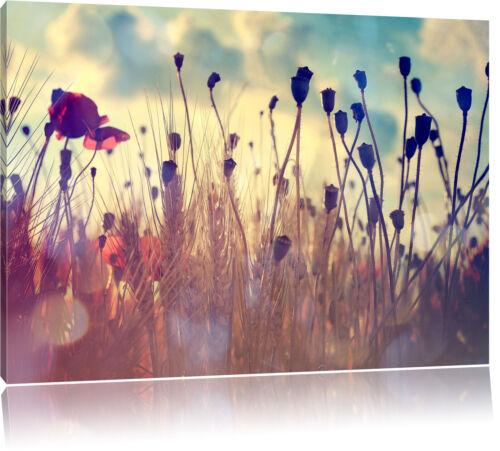 Mohn im Weizenfeld Leinwandbild Wanddeko Kunstdruck