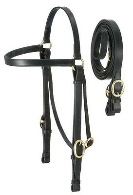 Australian Outrider collection black horse size Barco bridle horse tack equine