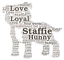 Personalised  Staffie Puppy Staffordshire Bull Terrier  word art picture