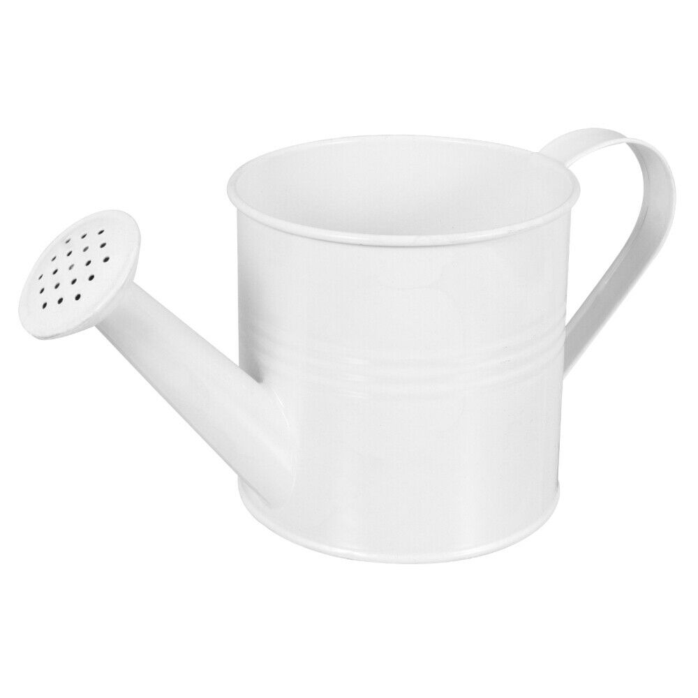 1pc Watering Can Outdoor Spray Watering Container Watering Holder