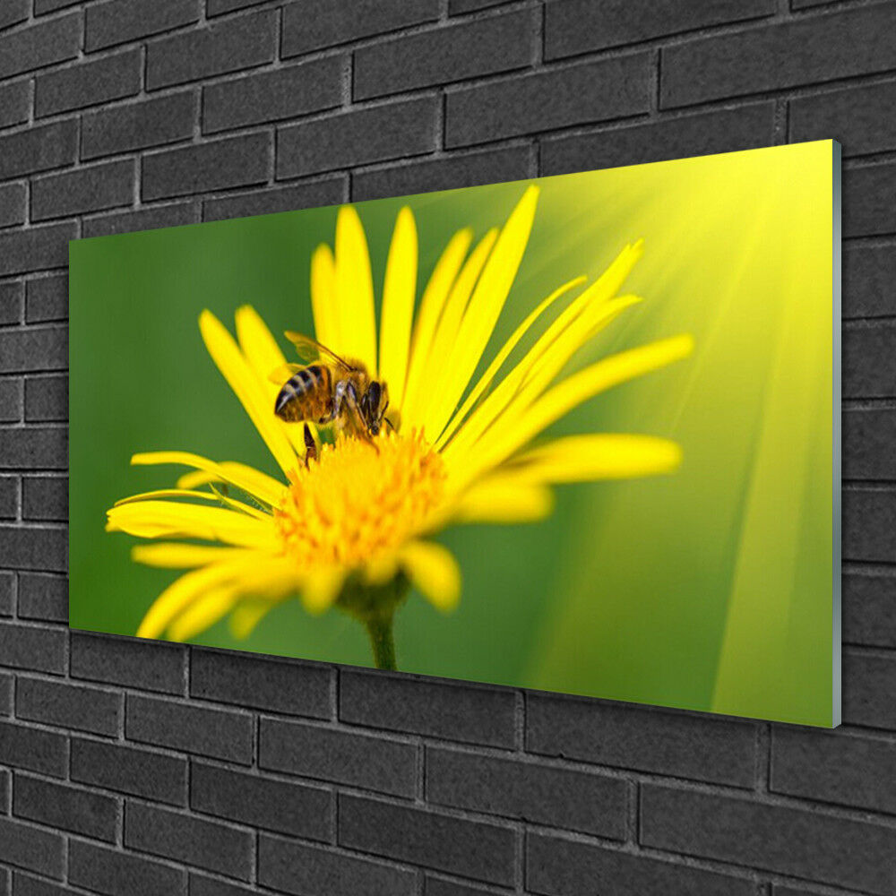 Glass print Wall art 100x50 Image Picture Wasp Flower Floral