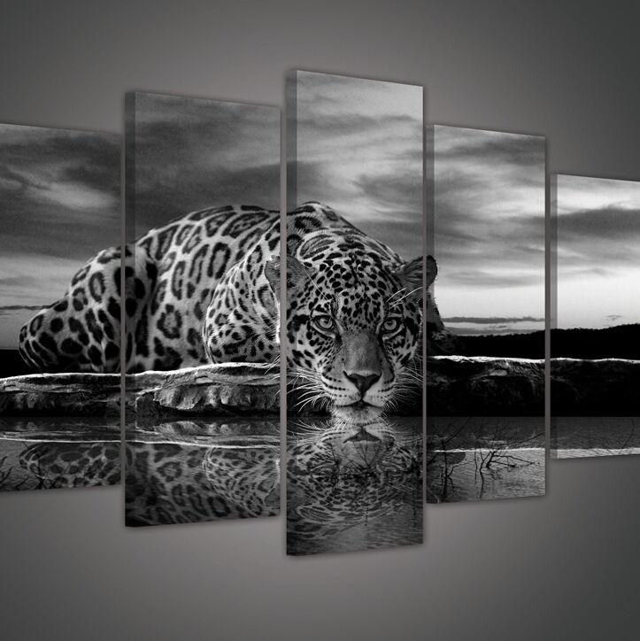 CANVAS Wandbild Bild Leinwandbild Tier Kazte Tiger Gepard Natur Foto 14NPS171S1