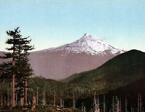 1898-Mt-Hood-Oregon-Vintage-Photograph-8-5-034-x-11-034-Reprint